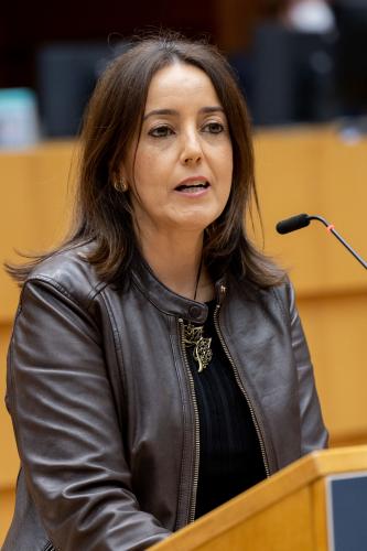 """Deputados detetam """"várias deficiências"""" e """"falta de harmonização"""" legislativa"""